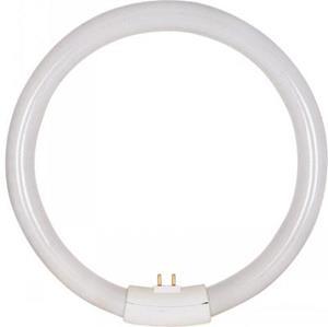 Imagen de Bombillo Tubo Fluorescente Circular 22w