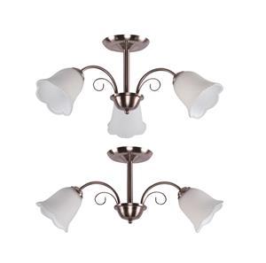 Imagen de Combo Lámparas de Techo 2L y 3L níquel satinado