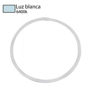 Imagen de Bombillo Fluorescente Circular T5 6400k