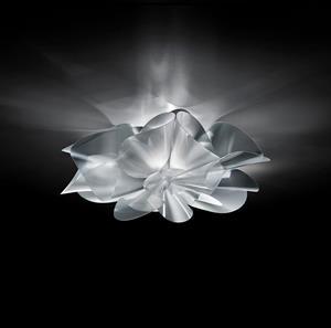 Lámpara de Techo LED Étoile 1L